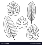 Превью tropical-leaves-collection-vector-18753885 (647x700, 197Kb)