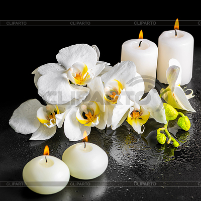 5704859-beautiful-spa-still-life-of-blooming-white-orchid (400x400, 180Kb)