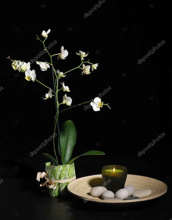 depositphotos_10038325-stock-photo-spa-still-life-with-orchid (549x700, 179Kb)