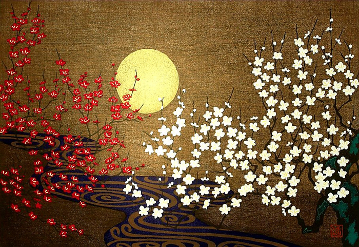 Sakura. (700x481, 570Kb)