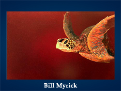 5107871_Bill_Myrick (250x188, 67Kb)