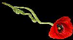 Счастливая поэзия - Страница 3 150124652_3906024_0_9d0a2_4fe27e95_S