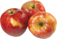 apple_PNG4715 (200x139, 14Kb)