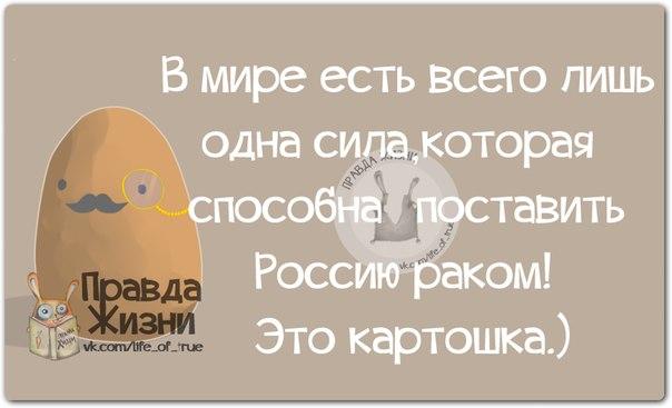 1400357172_frazochki-14 (604x367, 111Kb)