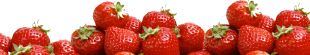 Strawberry-Slider (620x110, 128Kb)