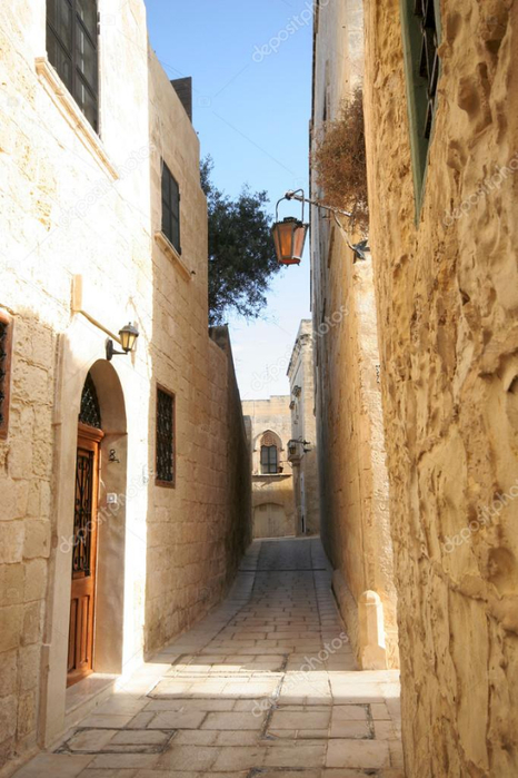 depositphotos_32475095-stock-photo-narrow-streets-of-mdina-malta (466x700, 336Kb)