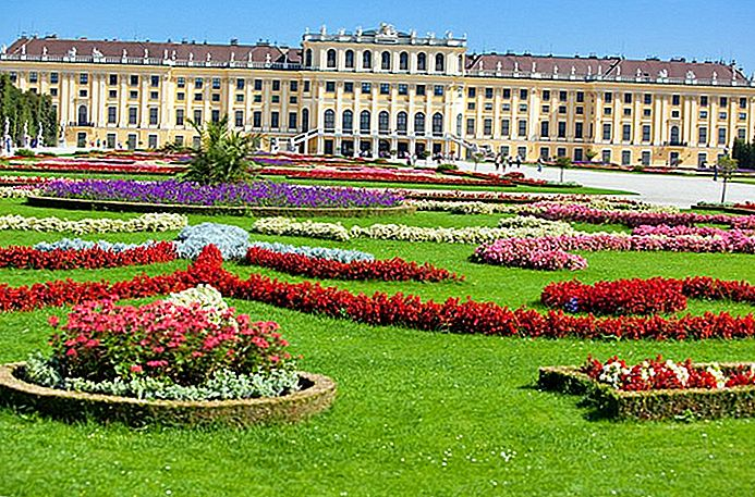 visiting-viennas-schnbrunn-palace-highlights-tips-tours (693x457, 580Kb)