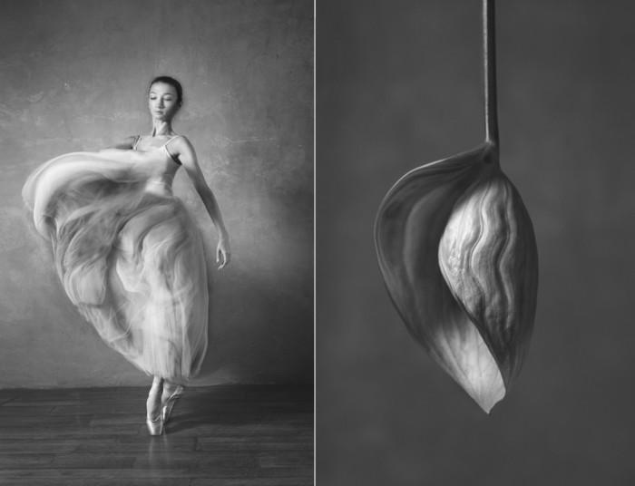 balerina-i-tsvety-fotograf-yuliya-artemeva-11 (700x536, 42Kb)