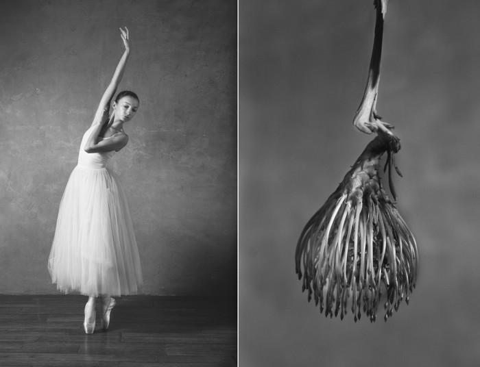 balerina-i-tsvety-fotograf-yuliya-artemeva-12 (700x536, 50Kb)