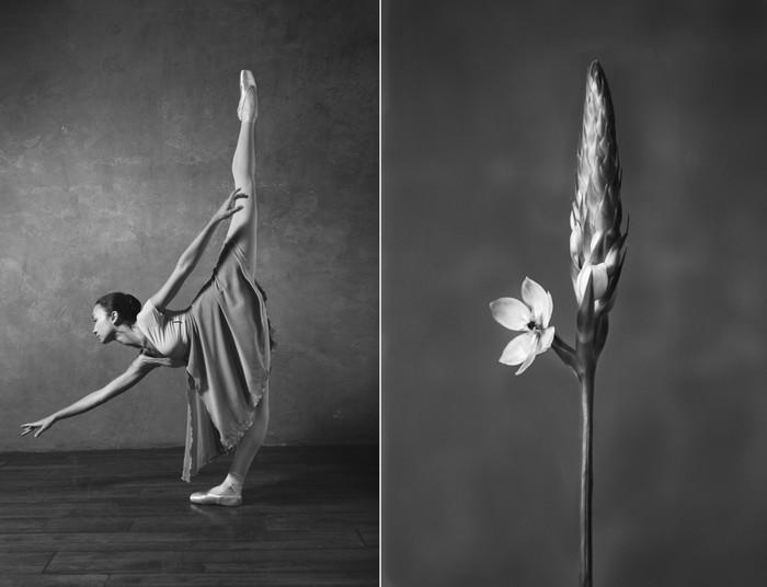balerina-i-tsvety-fotograf-yuliya-artemeva-13 (700x536, 45Kb)