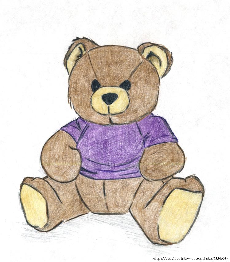 медвежонок рисунки карандашом