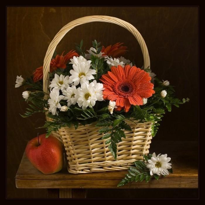 гифы цветы фото макро в корзинках названий