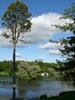 Посмотреть все фотографии серии природа и пейзаж