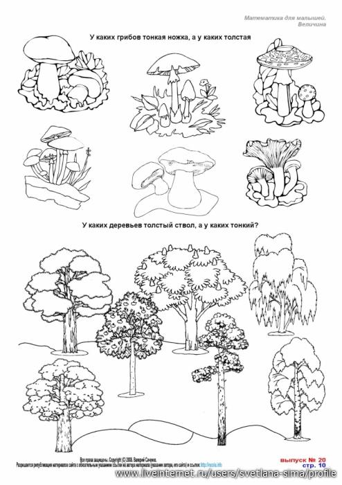 задания про грибы в картинках служебный