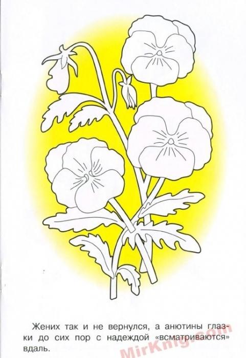 """""""Садовые цветы""""- Раскраска . . Обсуждение на LiveInternet ..."""