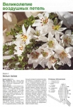 Цветы, связанные крючком. на Яндекс.Фотках.  Фотографии в альбоме.